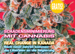 Medijuana #23