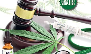 Medijuana #34